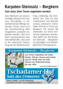flugblatt_Steinsalz