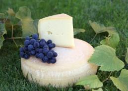 Schnittkäse nach Tilsiter Art aus teilentrahmter Milch, Reifung und Lagerung 3 Monate